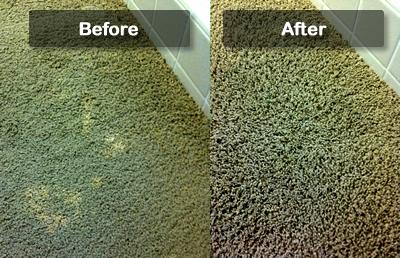 Shoud I Spot Dye My Carpet Americolor Dyes